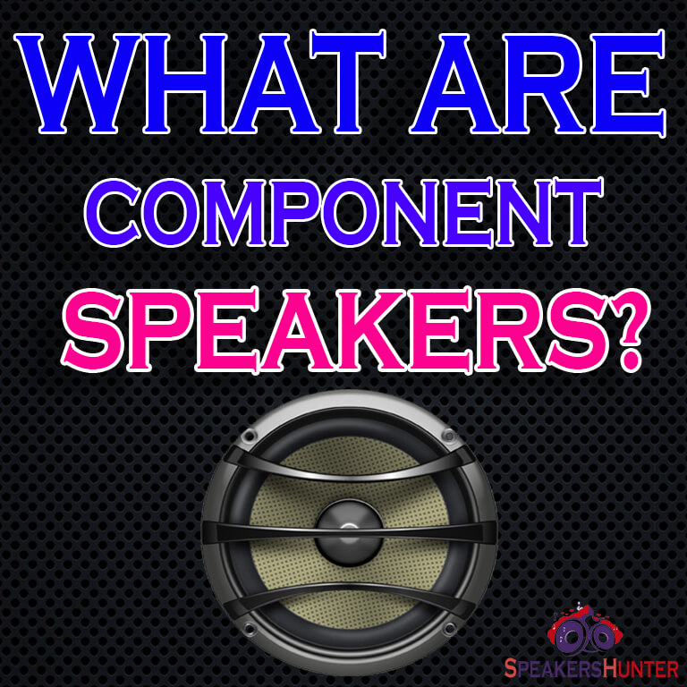 What are Component Speakers